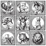 set of antique animals engravings (vector)
