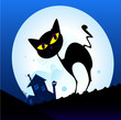 roleta: Black cat silhouette in night town. Vector Illustration