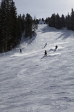skiers enjoying the slopes