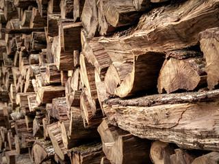 Troncos de madera, leña