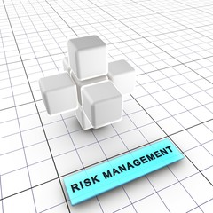 2-Risk management (Integrated risk management 2/6)