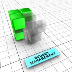 3-Budget management (Integrated risk management 3/6)