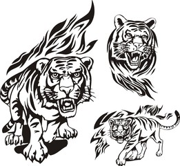 Aggressive tiger in a black flame. Flaming big cats.