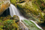 Cascade dans une rivière de Haute Corse