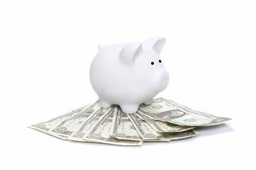 Piggy on Dollars