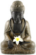 bouddha, fleur blanche frangipanier, collier, fond blanc