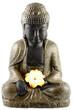 bouddha, fleur frangipanier, fond blanc