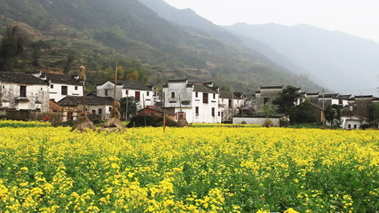 beautiful old village in China