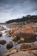 Coastal scenery with orange lichen rocks, Coles Bay, Tasmania