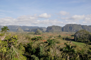 Elefanten-Hügel bei Vinales