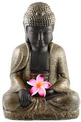 bouddha assis, fleur rose frangipanier, fond blanc