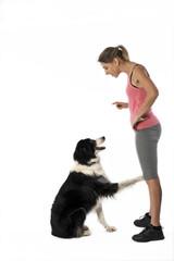 chien assis de profil tendant la patte à sa maîtresse