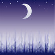 illustration with dark grass silhouette illuminated by moon