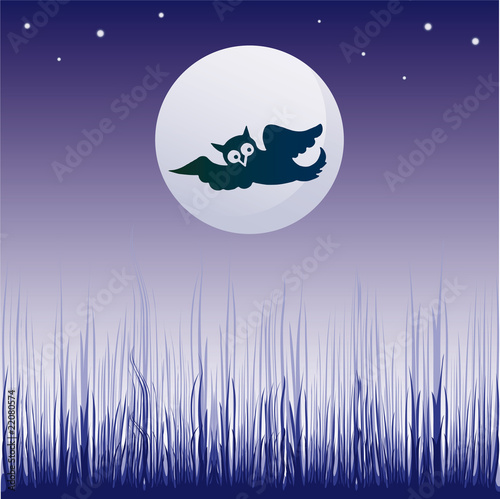 illustration with dark owl silhouette illuminated by the moon