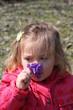 bébé fille sentant des violettes