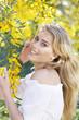 Giulia,corsage blanc,portrait,mimosa,profile