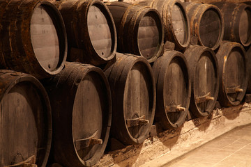 wine casks in winery cellar
