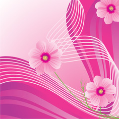 pink waves cosmos flowers abstract