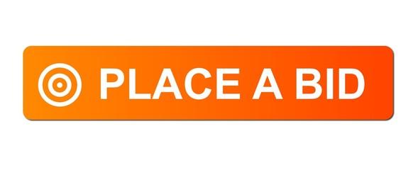 Place Bid Orange