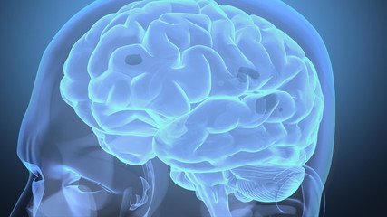 Journey into human head, with brain and neurons