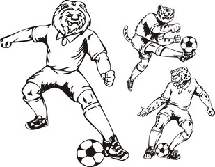 The lion, tiger and leopard play with a ball.