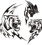 Two lionesses and black panther. Tribal predators. poster