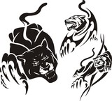 Black panther and two lionesses. Tribal predators. poster
