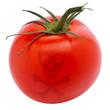 giftige Tomate