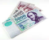 hungarian forints currency notes poster