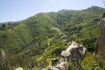panorama di campagna