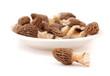 Morchel - edible mushroom Morchella
