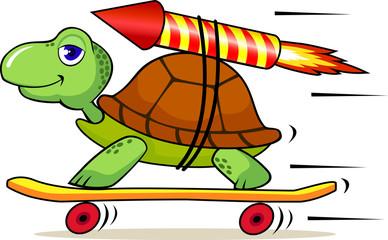 Fast turtle cartoon