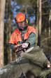 Forstarbeiter beim Brennholz sägen