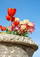Fleurs dans un vase en pierre