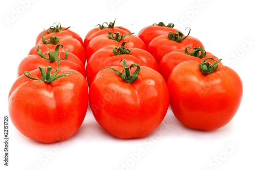 Tomatoes group