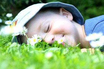 Adorable child lay down in flower field