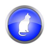 Azul Gato poster