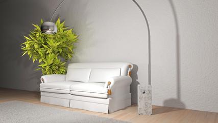 Divano bianco con lampada e pianta verde