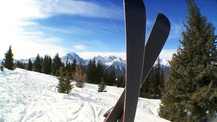 Carver Downhill Skis