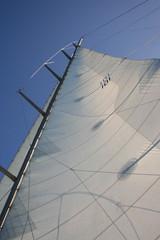 Tall sail