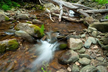Wooden river in Shenandoah national park