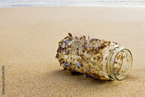 Shells on a Jar - Waiting for the Tide
