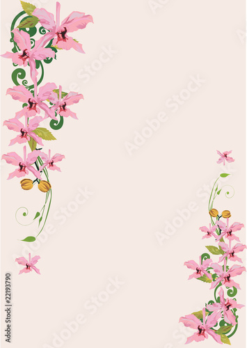 light pink orchids decoration