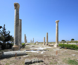 Tyre Roman Columns archeological site, Lebanon poster