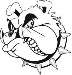 vector tattoo Bulldog head
