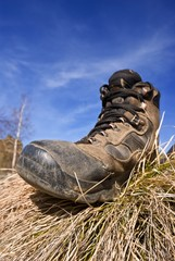 touristic boot in a grass