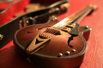 Semi-Hollow Model Guitar