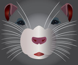grey rodent poster