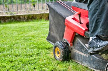 Giardiniere taglia erba