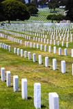 Rows of headstones of fallen soldiers poster